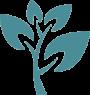 PLANT <br> CUSTOMIZATION